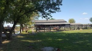 Vad és Vizivilág Park Panzió Kisfokto