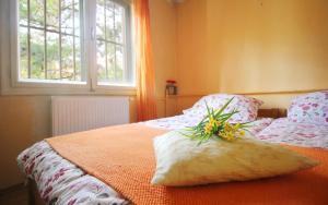 Green Apartment - фото 14