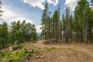 Mountain RV Experience on 35 Acres, Ferienhäuser  Black Hawk - big - 13