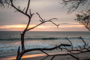Beachfront Villa Bonita, Vily  Santa Teresa - big - 24