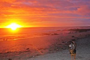 Beachfront Villa Bonita, Vily  Santa Teresa - big - 37