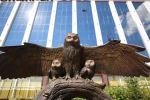 Красноярск - Snowy Owl Hotel
