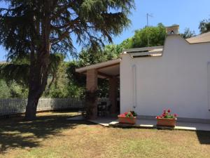 Villa Bagnaia, Ville  Sant'Anna - big - 36