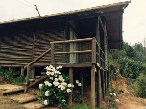 Cabana de La Meme