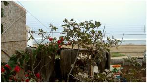 La Casa Janpix, Penzióny  Huanchaco - big - 8