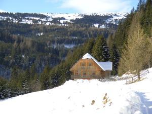 Brunnerhütte