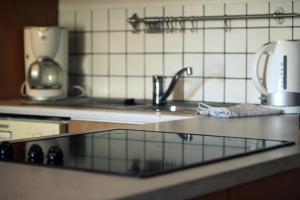 Gauksmyri Lodge - Apartment
