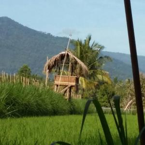 Bali Bila Bungalow, Vendégházak  Kubutambahan - big - 29
