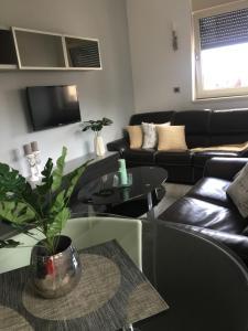Apartment Star, Ferienwohnungen  Zlatibor - big - 30