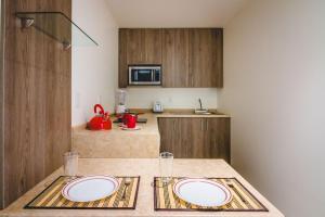 Millenium Plaza & Suites, Aparthotels  San Luis Potosí - big - 18