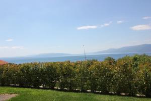 Studio apartment Miramare, Appartamenti  Fiume (Rijeka) - big - 5