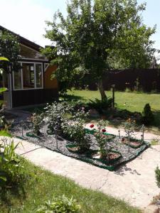 Villa Brusnika - фото 11