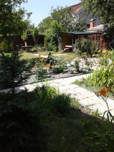 Villa Brusnika - фото 10