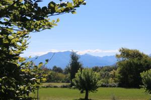 Locanda Dei Gelsi, Гостевые дома  Villar San Costanzo - big - 25