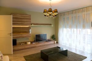 Ada Apartment, Appartamenti  Braşov - big - 6