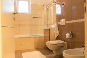 Ada Apartment, Appartamenti  Braşov - big - 17
