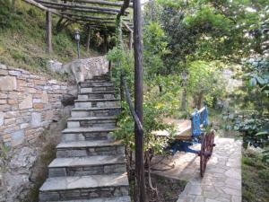 Villa Ivy