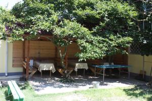 Виктория, Guest houses  Adler - big - 16