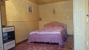 Villa L'vovskaia, Vendégházak  Truszkavec - big - 21