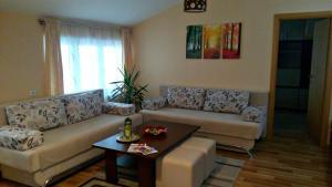 Apartment Mica