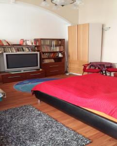 Danube Bridge Apartment House(Budapest)