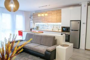Modern apartment-ARED