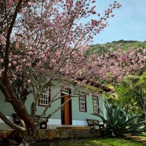 Pousada Gonçalves, Guest houses  Gonçalves - big - 19