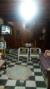 Geo Hostel, Hostely  Florianópolis - big - 13