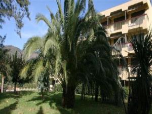 Apartment Parcs du lavandou, Апартаменты  Ле-Лаванду - big - 5