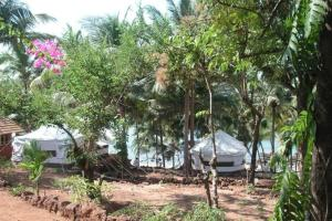 Tent stay at Cola Beach, by GuestHouser