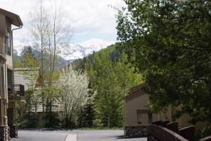 1881 Lions Ridge Loop #241595 Townhouse, Ferienhäuser  Vail - big - 10