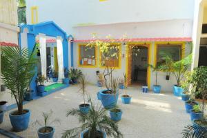 HosteLaVie - Varanasi, Hostely  Varanasi - big - 70