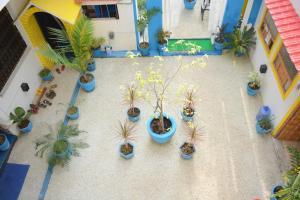 HosteLaVie - Varanasi, Hostely  Varanasi - big - 60
