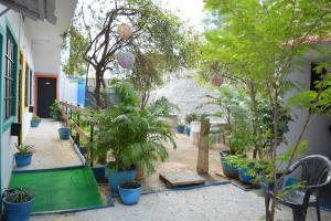 HosteLaVie - Varanasi, Hostely  Varanasi - big - 65