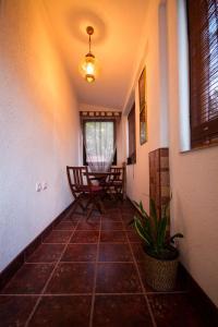 Apartman ELNA - фото 8