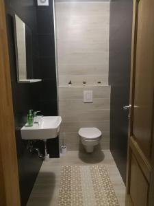 New Otoka Apartment - фото 10