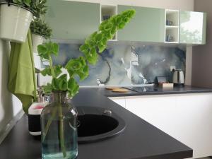 Apartament na Winnicy, Ferienwohnungen  Thorn - big - 6
