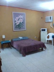 florida cuartos amueblados independientes clima centricos ubicados, Апартаменты  Вильяэрмоса - big - 14
