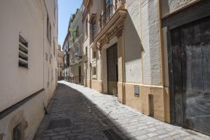 Palace house - Old City -, Apartments  Seville - big - 2