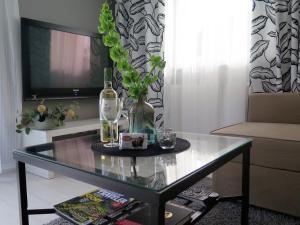 Apartament na Winnicy, Apartmanok  Toruń - big - 20