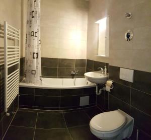 One Night Apartments, Appartamenti  Braşov - big - 2