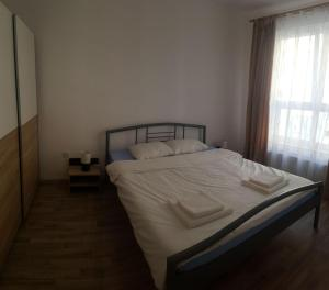 One Night Apartments, Appartamenti  Braşov - big - 3