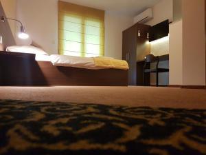 Hotel Ahar - фото 13