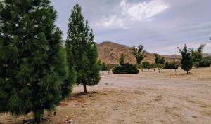 Stagecoach Trails RV Resort, Kempy  Julian - big - 51