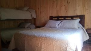 Hostal Turismo Allipén, Bed & Breakfasts  Melipeuco - big - 3