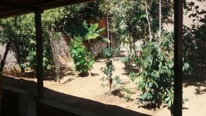 Hostel Canto das Araras, Hostels  Alto Paraíso de Goiás - big - 19