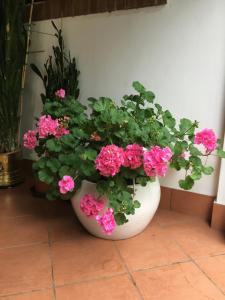 Agriturismo Da Ninoti, Farm stays  Treviso - big - 43