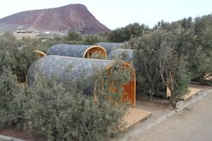 Eco-Wooden Houses