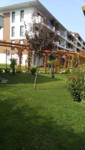Marmara Apart, Appartamenti  Yalova - big - 15