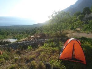 Amaizing Tents Mijo